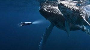 重新定义休闲钓鱼的装备 关健是还能静心钓鱼吗?