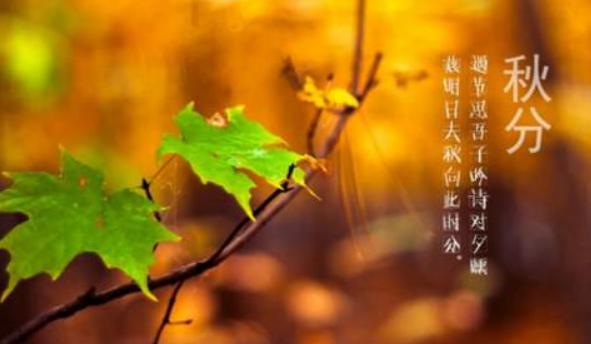 转眼天气渐凉已是秋分